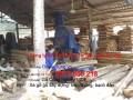Nhà máy xẻ xà gồ gỗ - Goxaydung.vn