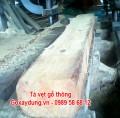 Tà vẹt gỗ thông