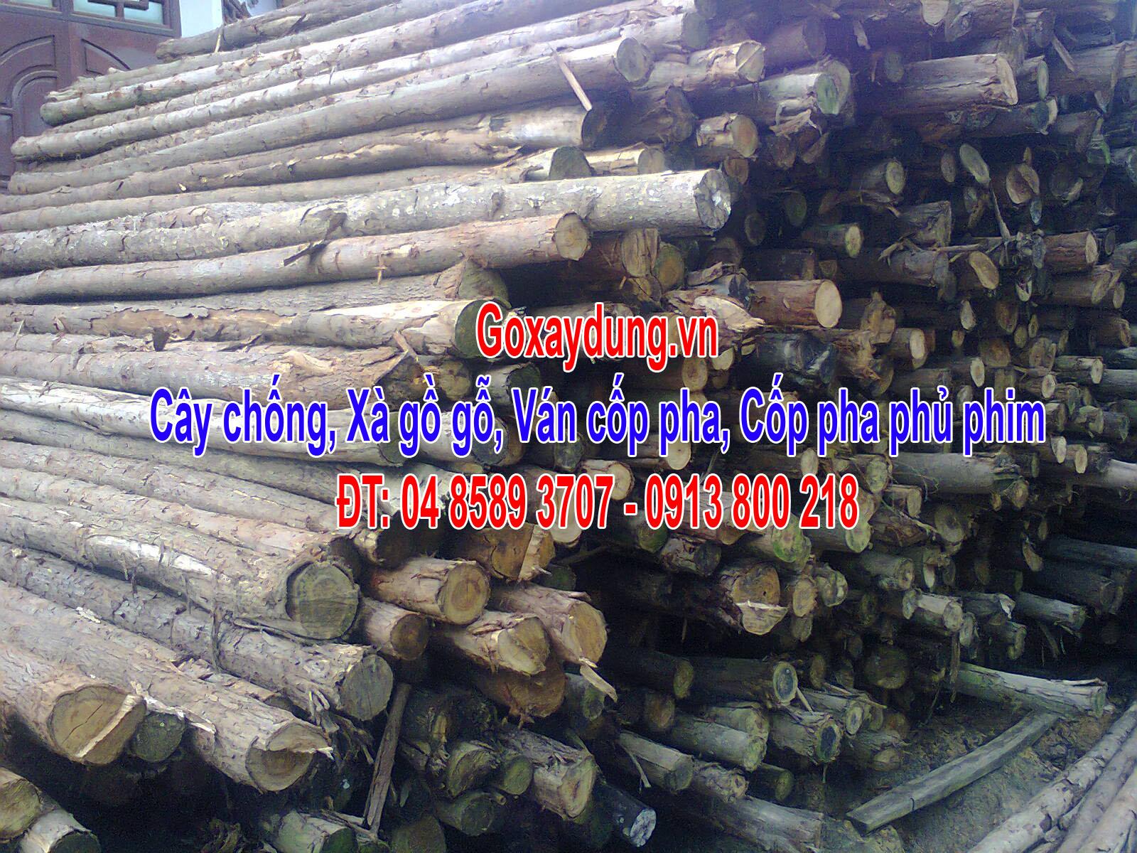 cay-chong-1-goxaydung.jpg